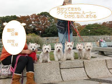 駒沢公園記念写真