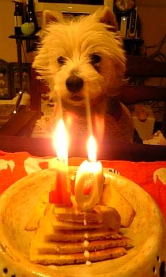 クララ10才誕生日3