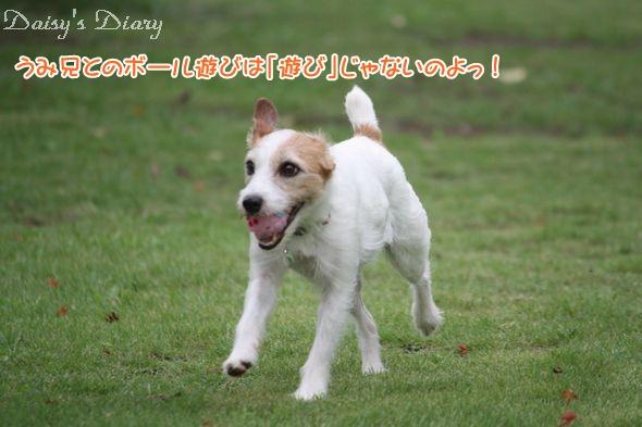 2010080112.jpg