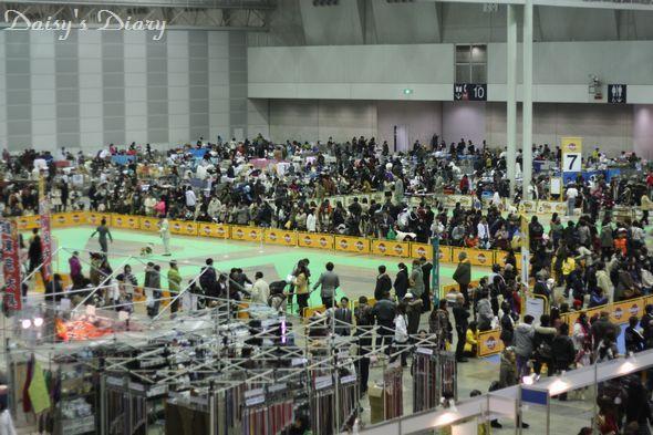 2011013104.jpg
