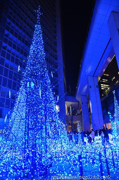 2011121_8.jpg