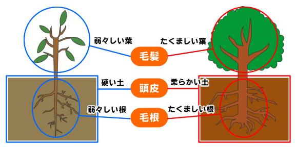 20121108_2.jpg