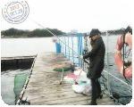白浜で魚釣り だっきゃ