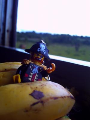 バナナに挟まれてる