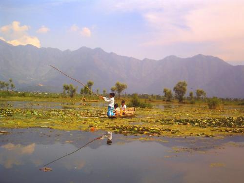 ダル・レークで魚を釣る少年