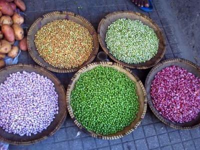カラフルな豆