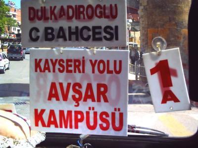 l_turkey.jpg