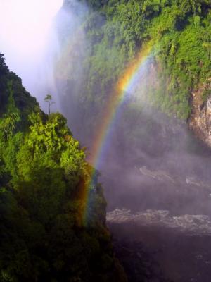 橋の上からみた虹