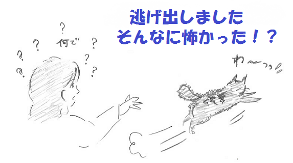 2013010608.png