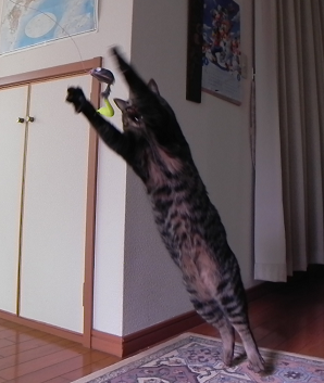 2013012702.png