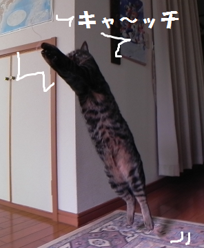 2013012703.png
