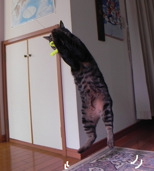 2013012705.png