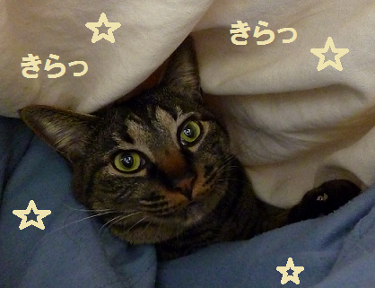 201302090501.png