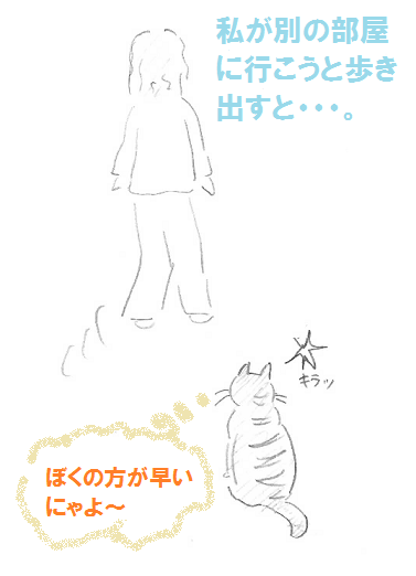 2013021101.png