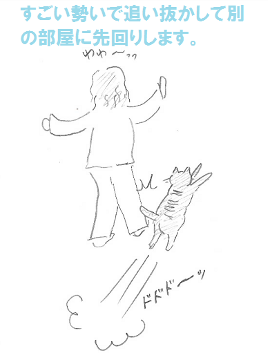 2013021102.png