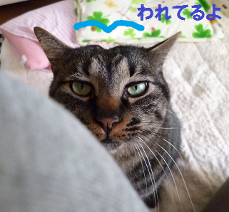 2013021502.png