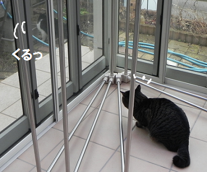 2013022205.png