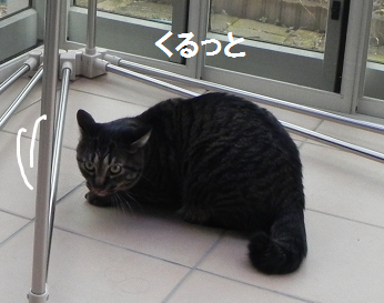 2013022206.png