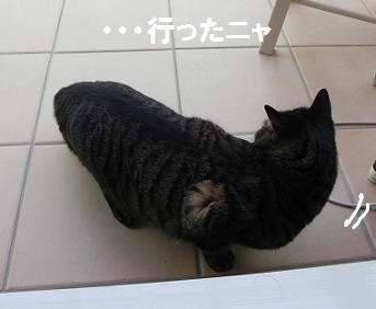 2013022210.png