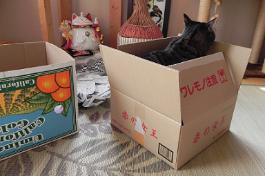 2013022401.png