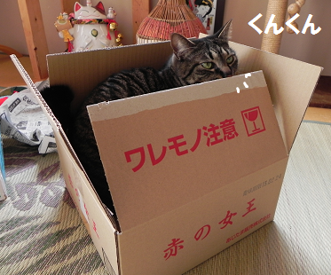 2013022402.png