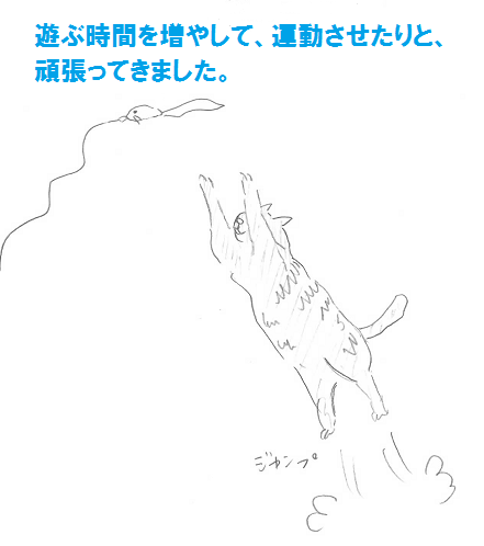2013030902.png