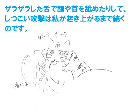 2013030906.png