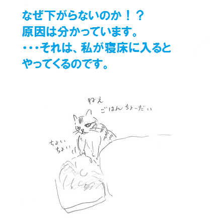 2013030909.png