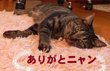 Yukiji=1.png
