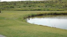 越谷ゴルフ2