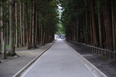 参道 杉並木