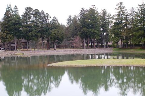大泉ケ池 2