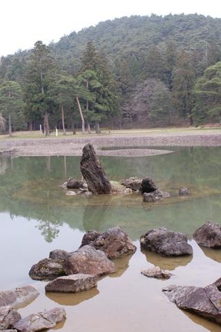 大泉家池 1