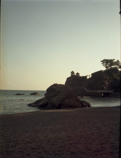 桂浜1 小