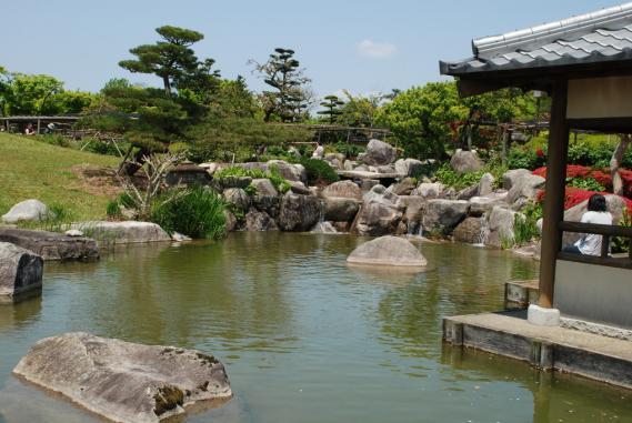 唐津牡丹園 (83)