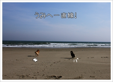 201022517.jpg