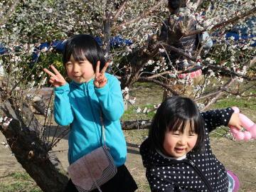 梅の花と…