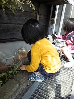 ネコと遊ぶ子供たち