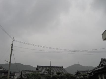 恵みの雨かな?