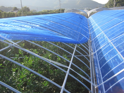 遮光兼防風ネット
