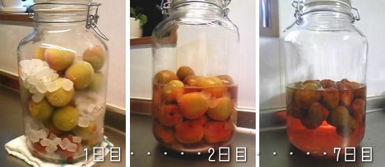 手作り梅ジュース