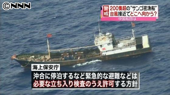 密漁船の緊急避難を許可!海保・国交相「台風避難でも上陸させない」・密漁船の無事願うNHK大越