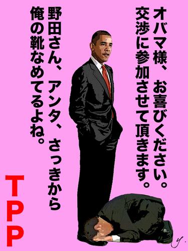 哀れ、野田!TPP参加も米の歓迎、今ひとつ!
