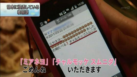 11月24日放送NHK「お元気ですか日本列島」の「日本に浸透している韓国語」 「ミアネヨ」ごめんね 「チャルモッケ スムニダ」いただきます