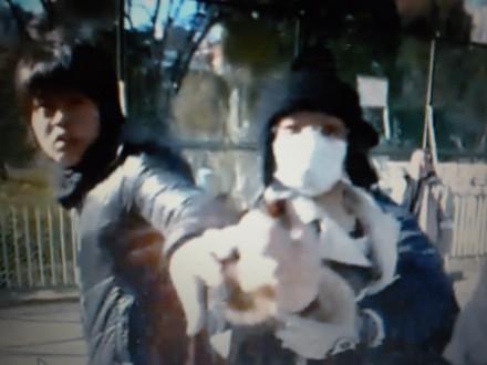 カメラマンに催涙スプレーを噴射する17歳のテロリスト