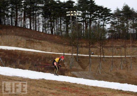 2018年冬季五輪平昌(韓国)\84791387平昌