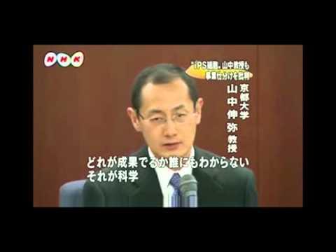 【ノーベル賞受賞】山中教授 事業仕分けを批判【2009年】