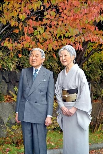 紅葉したカスミザクラを観賞する天皇、皇后両陛下=11月9日、皇居・宮殿御車寄、宮内庁提供