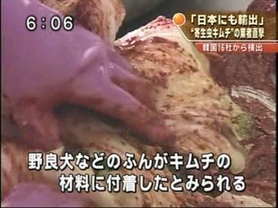 韓国産キムチから寄生虫の卵、野良犬の糞が見つかる 日本へも輸出