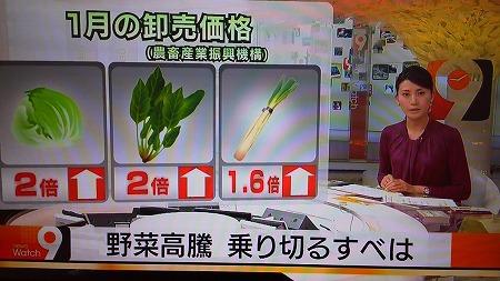 20130110NHKニュースウォッチ9